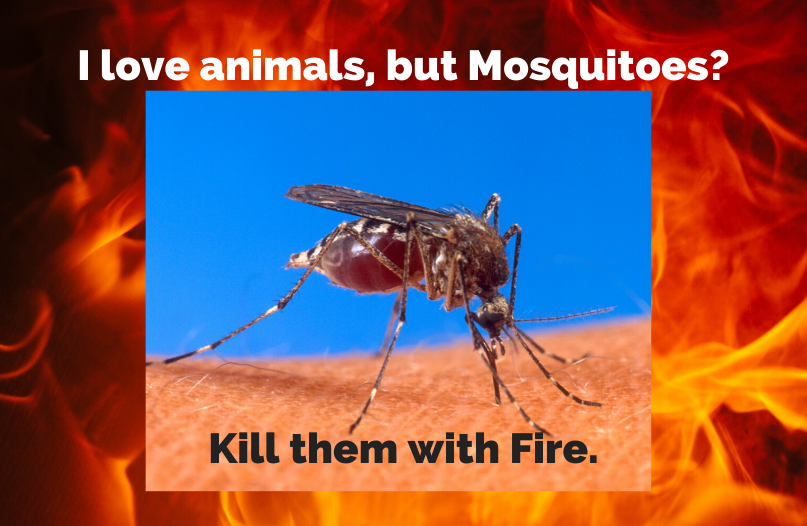 A particularly loathsome Mosquito wreathed in flames.