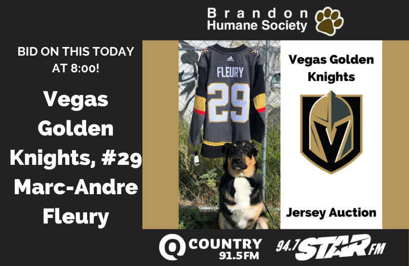 Vegas Golden Knights, #29 Marc-Andre Fleury, Jersey Auction TODAY!